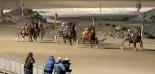 Pferderennen, sex, trondheim