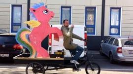 Pony Dieb in Dänemark
