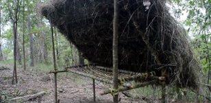 Trockenes Regenwaldbett Primitive Technology