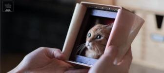 Relief-Katzenporträts