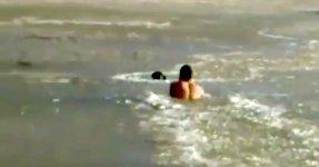 Rettung Hund Eis