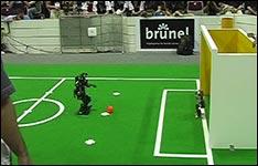 Fussball Roboter Tor