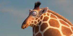 ROLLIN WILD - Giraffe
