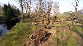 Schimpanse Affe Drohne