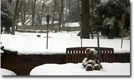 schnee im zeitraffer