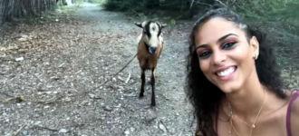 Selfie Ziege Kopfnuss