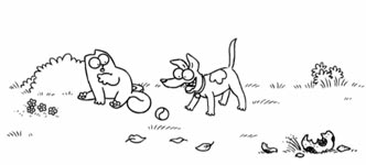 Simon's Cat, Fetch