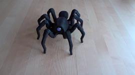 Vogelspinne, 3D-Drucker, Rumba