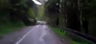 Sturm Bäume fallen