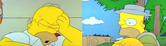 The Many D'ohs of Homer Simpson
