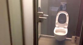 Toilettentür, Klotür