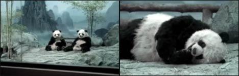 panda, trane,air conditioning, klimaanlage