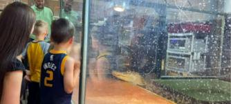 Alligator Kindergeburtstag