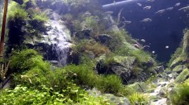 Aquarium Wasserfall