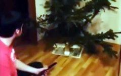 Weihnachtsbaum Nadeln