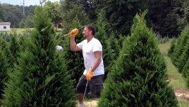 Weihnachtsbaum Trimmer