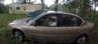 'Wespen Auto