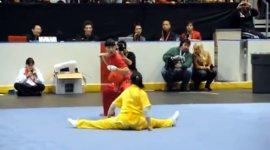 Wushu Kampfkunst